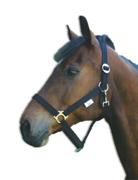 Ohlávka pro koně nylonová CLASSIC, černá