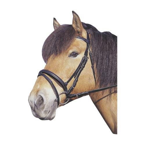 Uzdečka pro koně podložená + otěže, černá