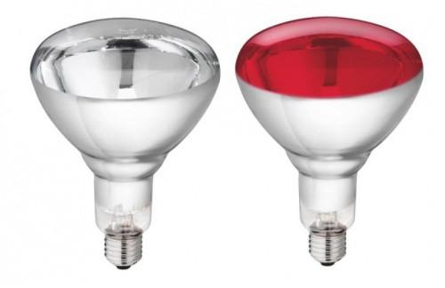 Infaržárovka PHILIPS 150W / 250W, červená / čirá