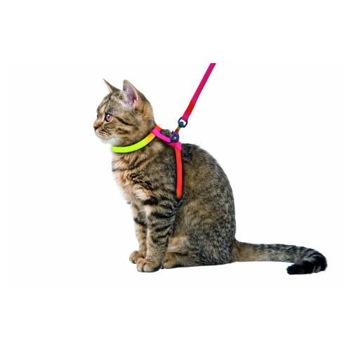 Postroj pro kočku s vodítkem