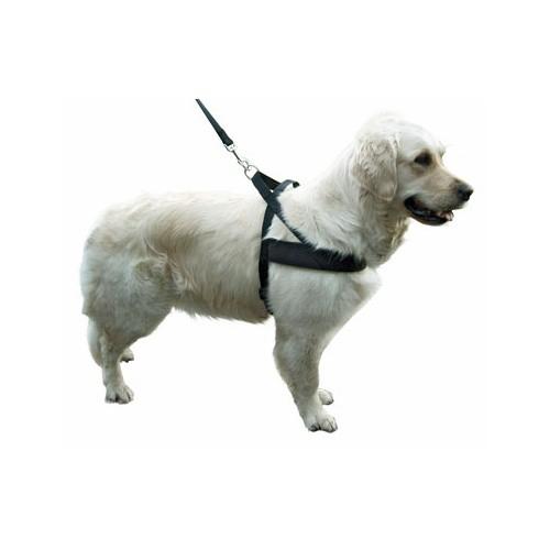 Postroj pro psy MIAMI