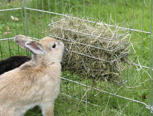 Jesle na seno pro králíky