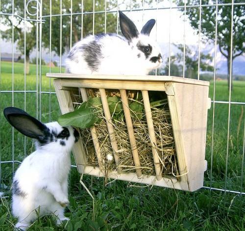 Jesle na seno pro králíky dřevěné, 25 x 17 x 20cm