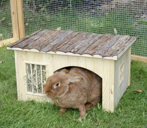 Domek pro králíky, s jeslemi na seno, 42 x 34 x 27cm