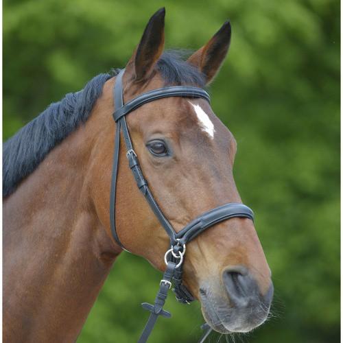 Bezudidlová uzdečka pro koně Waldhausen, černá