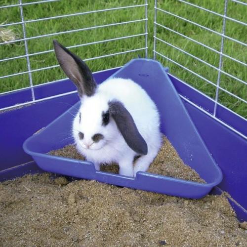 Toaleta pro králíky, rohová