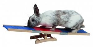 Agility překlápěcí překážka pro králíky a jiné hlodavce - králičí hop