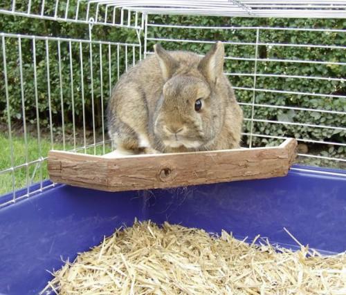 Terasa pro králíky, rohová, 26 x 26 x 4 cm