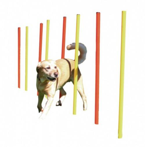 Agility překážka pro psy SLALOM 12 tyčí s úložnou taškou