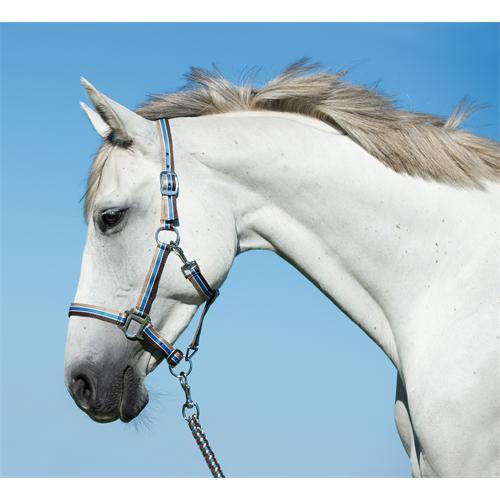 Ohlávkový set pro koně, modro-hnědá
