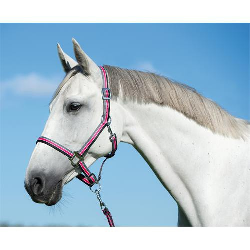 Ohlávkový set pro koně, šedo-růžový