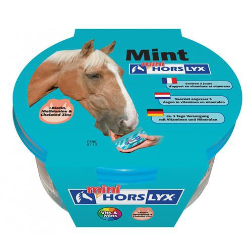 Liz pro koně, HORSLYX, 650 g, mint