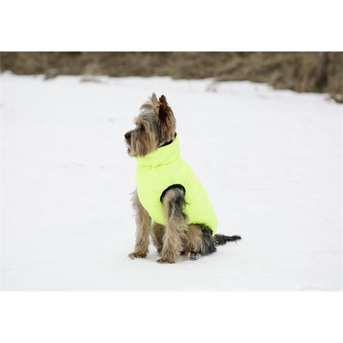 Obleček pro psy Charmonix - 45 cm