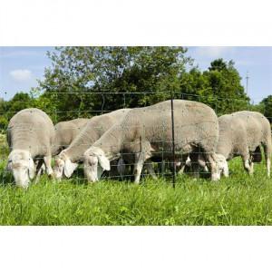 Síť pro elektrické ohradníky na ovce OVINET v. 108 cm, d. 50 m, dvojitá špička, zelená